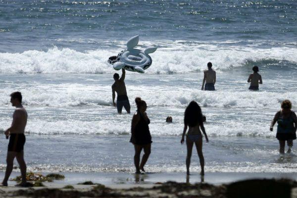 旧金山海水细菌指数下降 可游泳冲浪